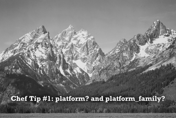 Tip 1: platform? and platform_family?