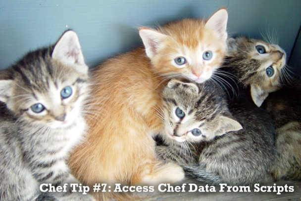 Tip 7: Access Chef Data From Scripts